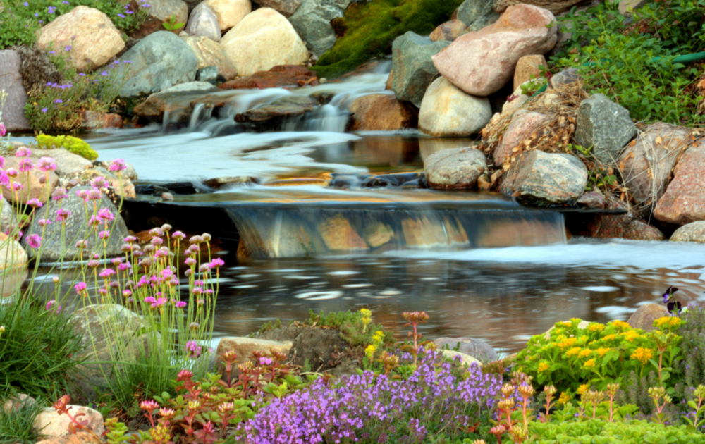 Tips for Adding a Backyard Water Feature